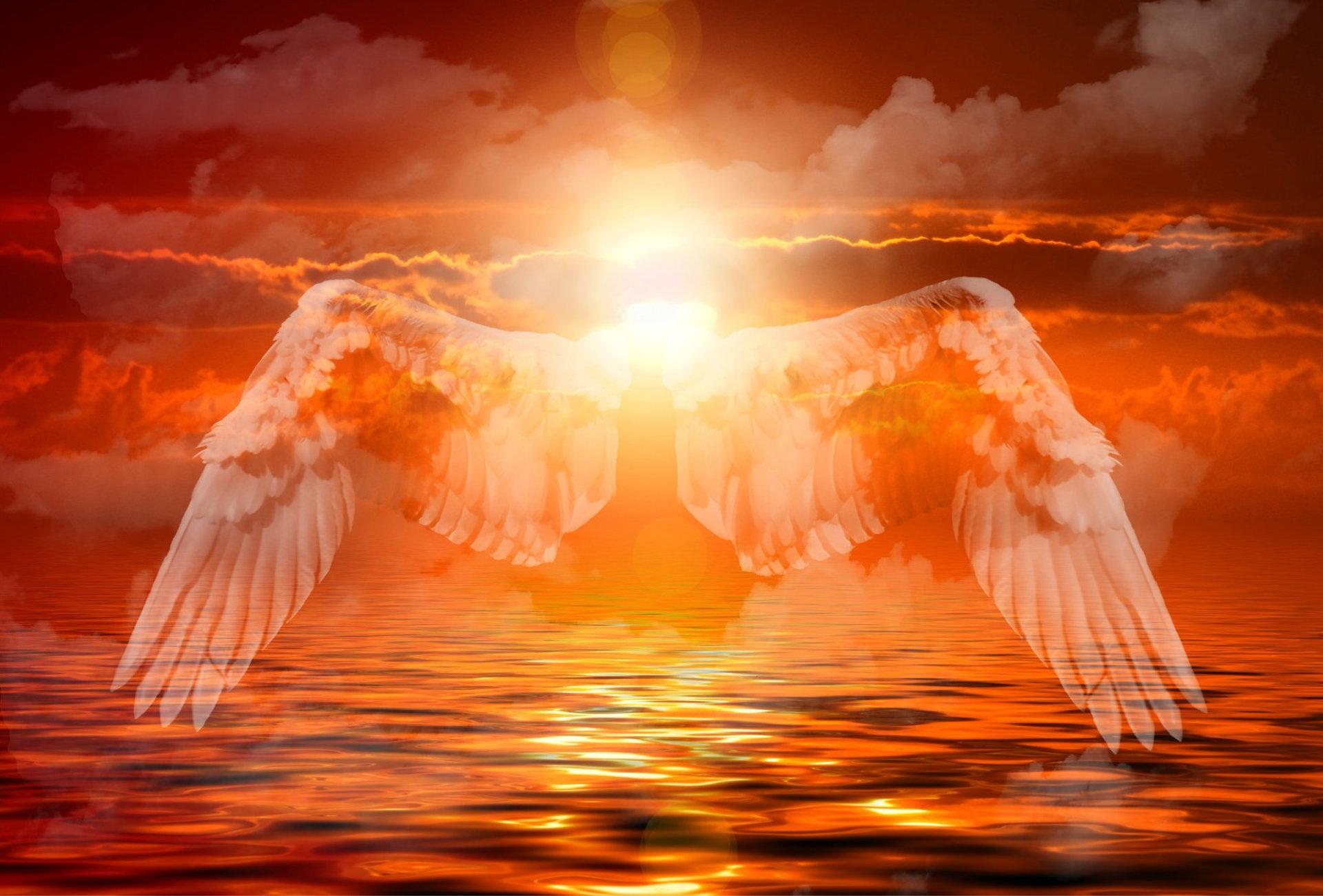 Tröstende Worte im Trauerfall – so finden Sie den Text für Ihre Trauerkarte